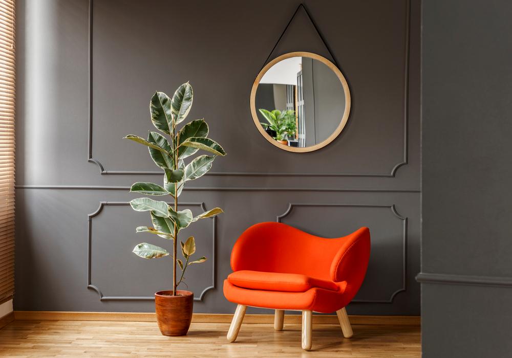 mirror-interior
