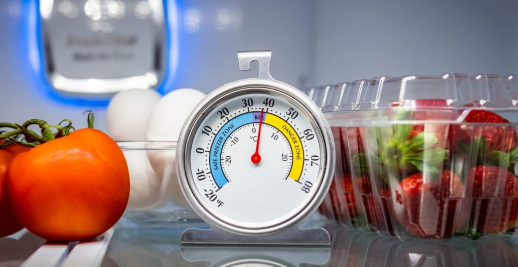 best-fridge-thermometer