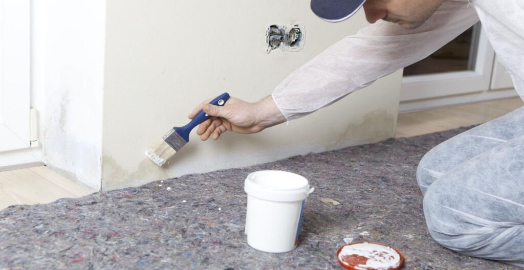best-anti-mould-paint