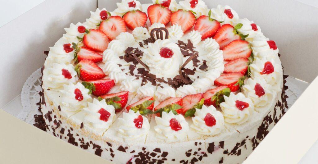 best-cake-box
