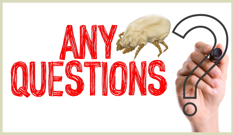 Any Questions About Dust Mite Bites