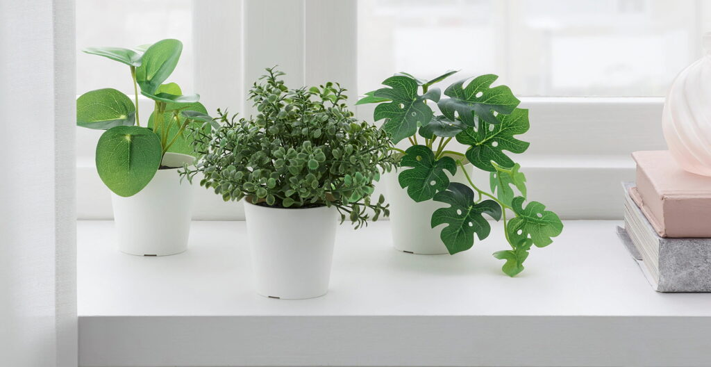 Artificial House Plants - Are They Worth It?