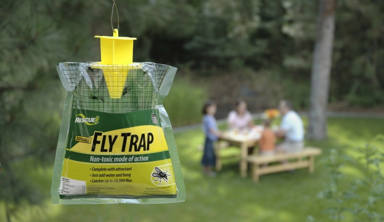 Buy Fly Trap