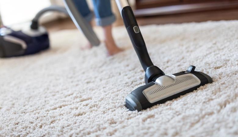 Vacuuming Carpet Beetles